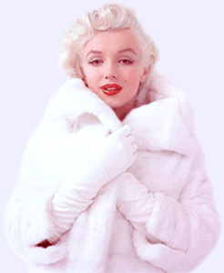 Marilyn Monroe - Picture 11